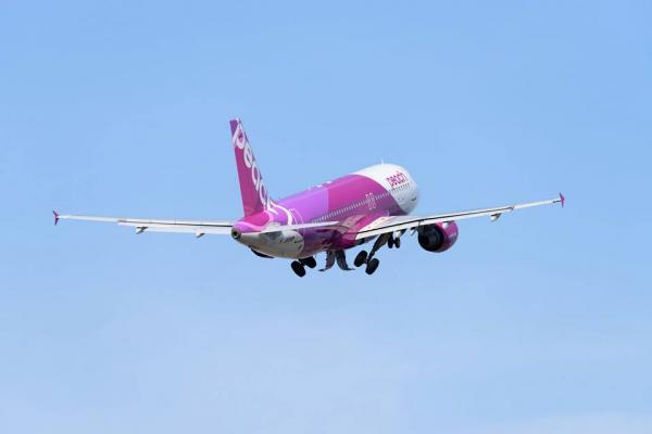 Японская авиакомпания ответила на слухи о прекращении внедрения платежей криптовалютой