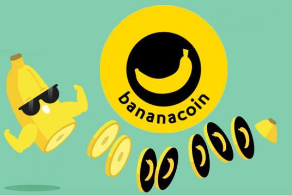 На организатора ICO Bananacoin может быть заведено уголовное дело