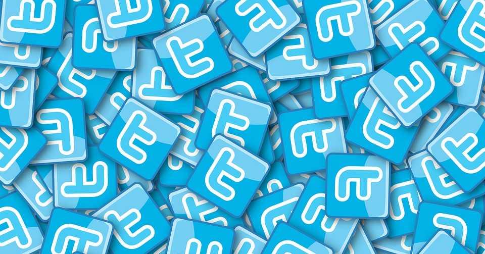 Twitter рассматривает применение технологий блокчейн в борьбе с кибермошенничеством