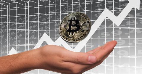 Как заработать на рынке криптовалют, если ты еще новичок и только учишься?