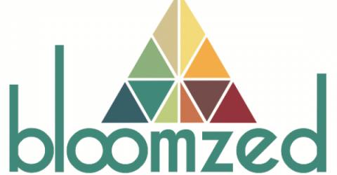 Ассистент финансового планирования Bloomzed запустил preSale токенов BZT