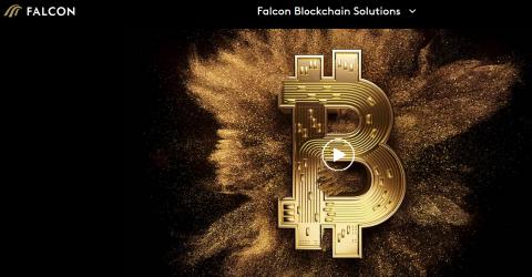 Швейцарский Falcon bank создал свой криптокошелек с возможностью вывода в фиатной валюте