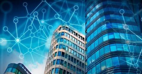 В Северной столице запустят крипто-реалити-шоу «Цифровая ратуша»