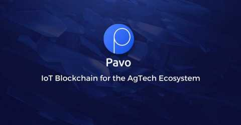 Pavo будет сотрудничать с инновационными инкубаторами Малайзии, чтобы внедрять новые технологии в местное сельское хозяйство