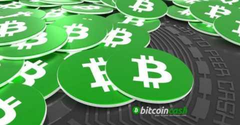 Разногласия разработчиков могут привести к хардфорку Bitcoin Cash