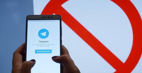 Пользователи рунета создали несколько петиций в поддержку Telegram