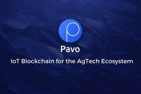 ICOBox и Pavo объединяют усилия, чтобы изменить сельскохозяйственные технологии с помощью интернета вещей на блокчейне